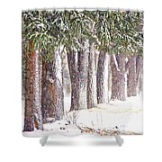 Maple Street Maples Colourized Shower Curtain