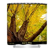 Maple Tree Poster Shower Curtain