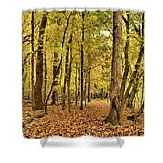 Maple Woods Trail Shower Curtain