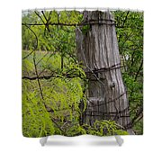 Marble Falls Texas Old Fence Post In Spring Shower Curtain