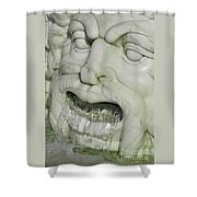 Marble Head Shower Curtain