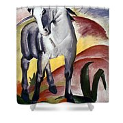 Marc: Grey Horse, 1911 Shower Curtain