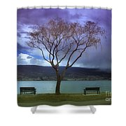 March 30 2010 Shower Curtain