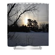 March Sunrise Behind Pines Shower Curtain