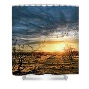 March Sunrise Shower Curtain by Lynn Geoffroy