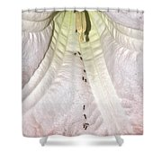 Marching Ants Shower Curtain