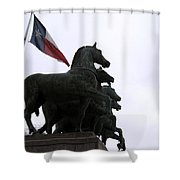Marching Horses Shower Curtain