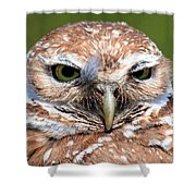 Marco Burrowing Owl - I Know What You're Thinking Shower Curtain