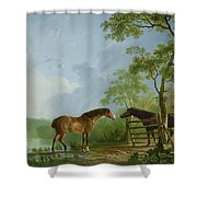 Mare And Stallion In A Landscape Shower Curtain
