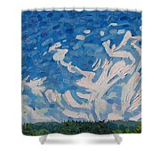 Mare's Tails Shower Curtain