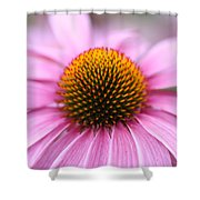 Marguerite Shower Curtain