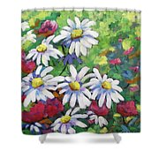 Marguerites 001 Shower Curtain