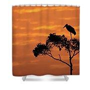 Maribou Stork On Tree With Orange Sunrise Sky Shower Curtain