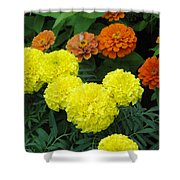 Marigold And Zinnias Shower Curtain