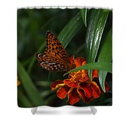 Marigold Grows Wings Shower Curtain
