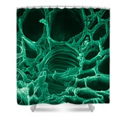 Marijuana Stem Section, Sem Shower Curtain