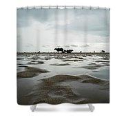 Marina Beach, Chennai Shower Curtain