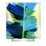 Marine Shower Curtain