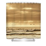 Marine Dream Shower Curtain