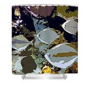 Marine Life Shower Curtain by David Lee Thompson