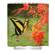 Mariposa Amazonica Shower Curtain