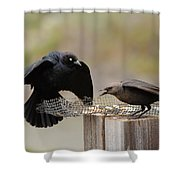 Marital Bliss Shower Curtain