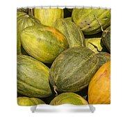 Market Melons Shower Curtain