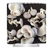 Market Mushrooms Shower Curtain