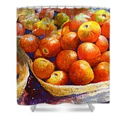 Market Tomatoes Shower Curtain