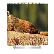 Marmot Life Shower Curtain