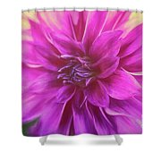 Marrianne Shower Curtain