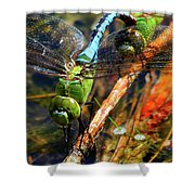 Married With Children Dragonflies Mating Shower Curtain