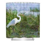 Marsh Egret Shower Curtain