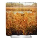 Marsh Grass And Snow Shower Curtain