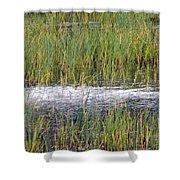 Marsh Grasses Shower Curtain