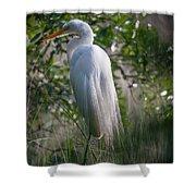 Marsh Heron Shower Curtain