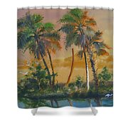 Marsh In The Morning Shower Curtain
