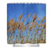 Marsh In The Wind Shower Curtain