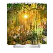 Willow Weep For Me Shower Curtain