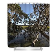 Marsh Shower Curtain