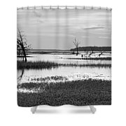 Marsh Skeletons Shower Curtain