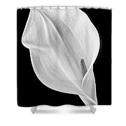 Marvelous Calla Lily In Black And White Shower Curtain