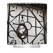 Mary Enclosed 2 Shower Curtain