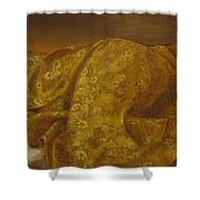 Mary Magdalene-the Dream Shower Curtain