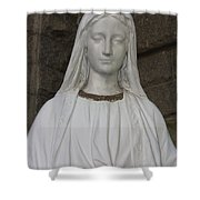 Mary Statue At Sacred Heart In Tampa Shower Curtain