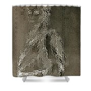 Mary Through The Looking Glass Shower Curtain