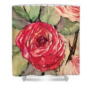 Ma's Roses 3 Shower Curtain