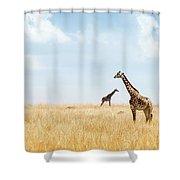 Masai Giraffe In Kenya Plains Shower Curtain