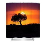 Masai Mara Sunrise Shower Curtain