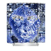 Mask Of The Great Lady Shower Curtain